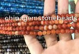 CAA1566 15.5 inches 4mm round banded agate beads wholesale