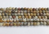 CAA2350 15.5 inches 8mm round crazy lace agate beads wholesale