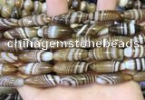 CAA5112 15.5 inches 8*25mm rice striped agate beads wholesale