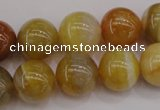 CAG4325 15.5 inches 14mm round botswana agate gemstone beads