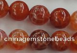 CAG5563 15.5 inches 10mm round natural fire agate beads wholesale