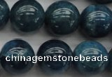 CAP403 15.5 inches 10mm round A grade natural apatite beads