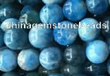 CAP577 15.5 inches 6mm round apatite beads wholesale