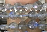 CCB540 15.5 inches 4mm faceted coin labradorite gemstone beads