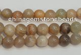 CCS303 15.5 inches 8mm round natural sunstone beads wholesale