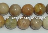 CCS307 15.5 inches 16mm round natural sunstone beads wholesale