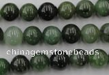 CDJ253 15.5 inches 10mm round Canadian jade beads wholesale