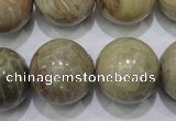 CFA27 15.5 inches 18mm round chrysanthemum agate gemstone beads
