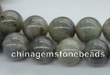 CLB102 15.5 inches 14mm round labradorite gemstone beads wholesale