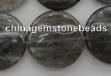 CLB739 15.5 inches 30mm flat round labradorite gemstone beads