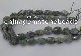 CLB769 15.5 inches 13*18mm - 18*25mm faceted freeform labradorite beads