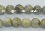 CMS122 15.5 inches 12mm round moonstone gemstone beads wholesale
