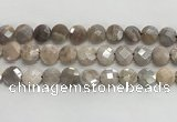 CMS1790 15.5 inches 12mm faceted coin AB-color moonstone beads