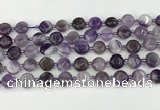 CNA1185 15.5 inches 10mm flat round amethyst beads wholesale
