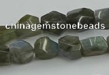 CNG5753 15.5 inches 10*12mm - 12*16mm faceted nuggets labradorite beads