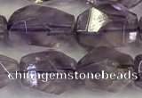 CNG6959 10*14mm - 13*18mm faceted nuggets amethyst beads