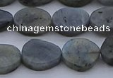 CNG7578 15.5 inches 10*14mm - 13*18mm freeform labradorite beads