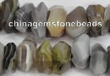 CNG855 15.5 inches 7*13mm – 10*20mm faceted nuggets Botswana agate beads