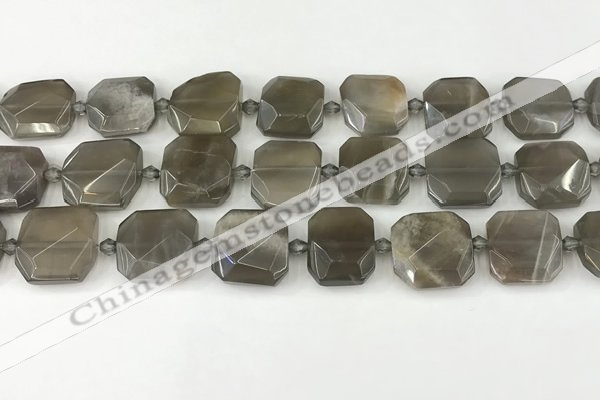 CNG8810 15.5 inches 16mm - 20mm faceted freeform moonstone beads