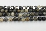 COP1603 15.5 inches 10mm round moss opal beads wholesale