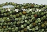 CRH54 15.5 inches 4mm faceted round rhyolite beads wholesale