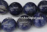 CRO422 15.5 inches 16mm round sodalite gemstone beads wholesale