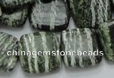 CSJ29 15.5 inches 20*20mm square green silver line jasper beads
