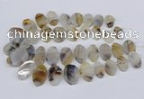 CTD2825 Top drilled 15*25mm - 25*35mm freeform Montana agate beads