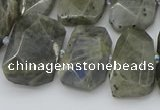 CTD3573 15.5 inches 15*20mm - 18*25mm freeform labradorite beads