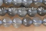 CTG1582 15.5 inches 4mm round grey moonstone beads wholesale