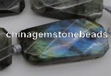CTW457 20*38mm faceted & twisted rectangle labradorite beads