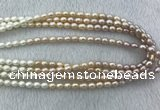 FWP210 15 inches 6mm - 7mm rice mixed color freshwater pearl strands